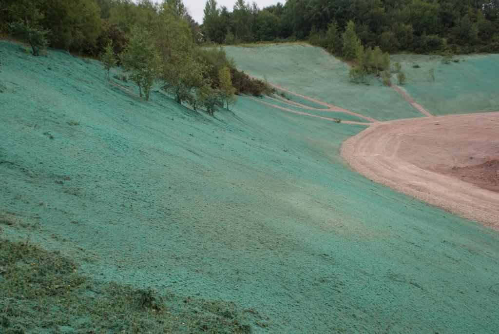 Erosion Control Hydroseed Bank