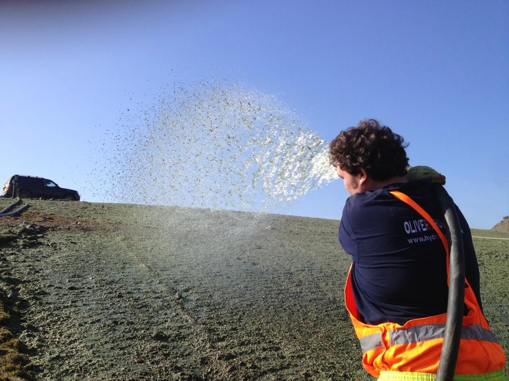 Man Hydroseeding Grass